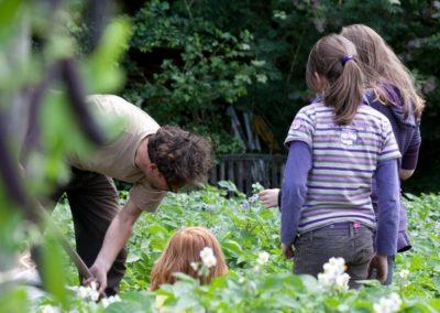 De Verbinding: Gemeenschappelijke binnentuin ontwerpen en beheren